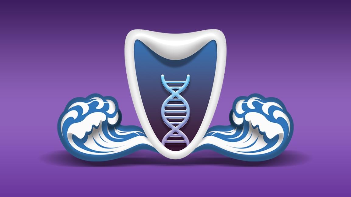 Yeşim Kuzu Theta Akademi logosu