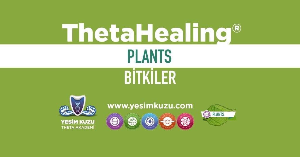 Bitkilerle eğitiminin görseli