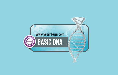 Temel DNA eğitiminin logosu