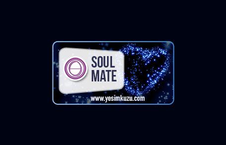 Ruh Eşi eğitiminin logoosu